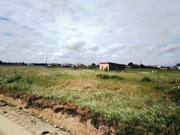 Terreno para construção em Foros de Salvaterra, Benavente