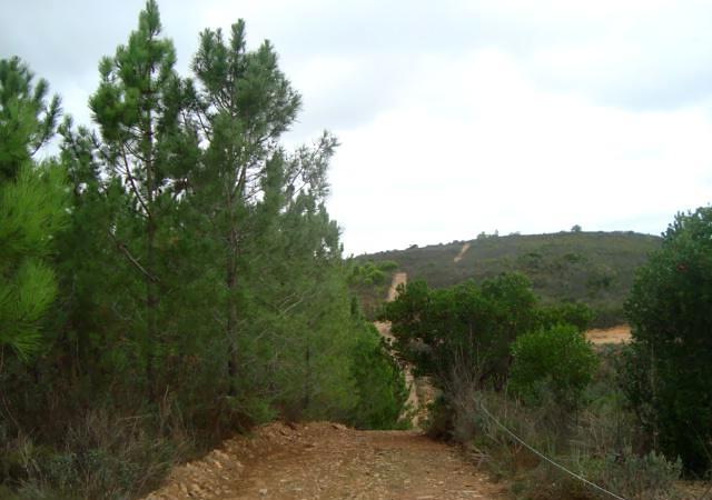 Terreno em Almarjão, Aljezur