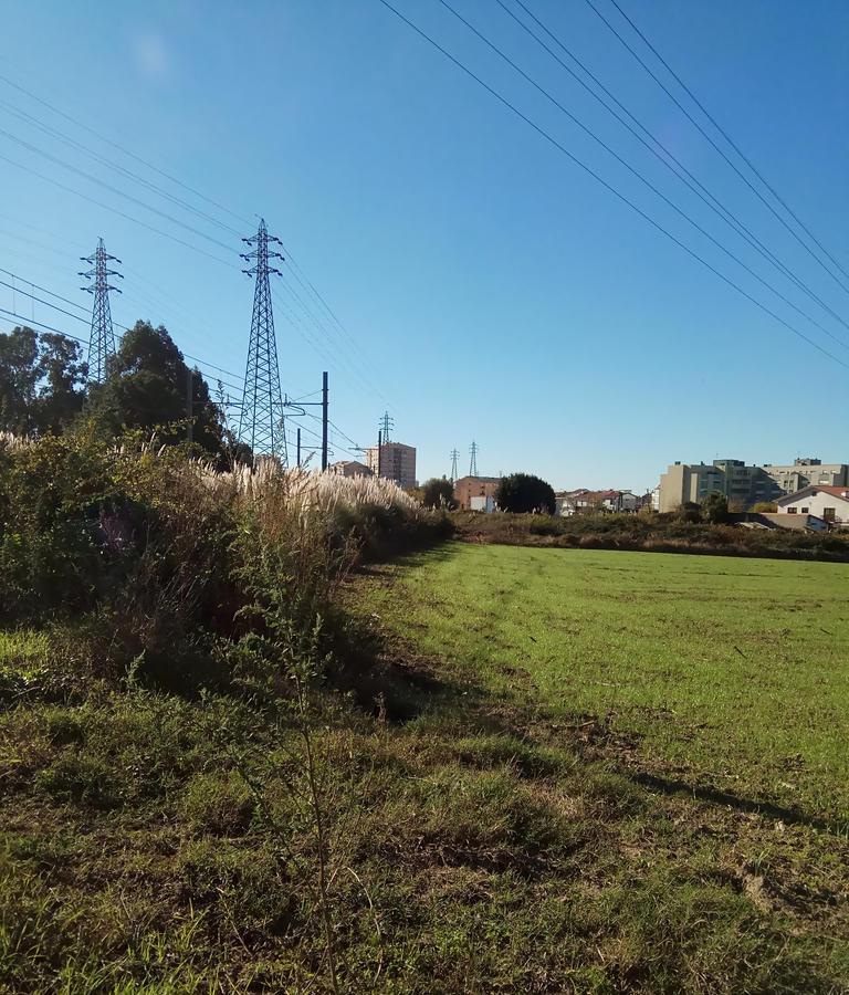 Terreno Rústico em Custóias, Matosinhos