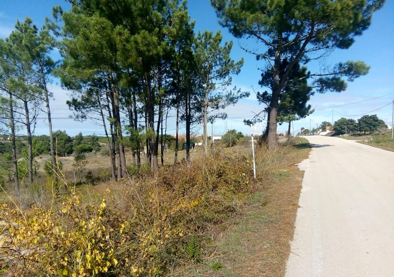 Terreno rústico em Carrascalinho, Aljezur