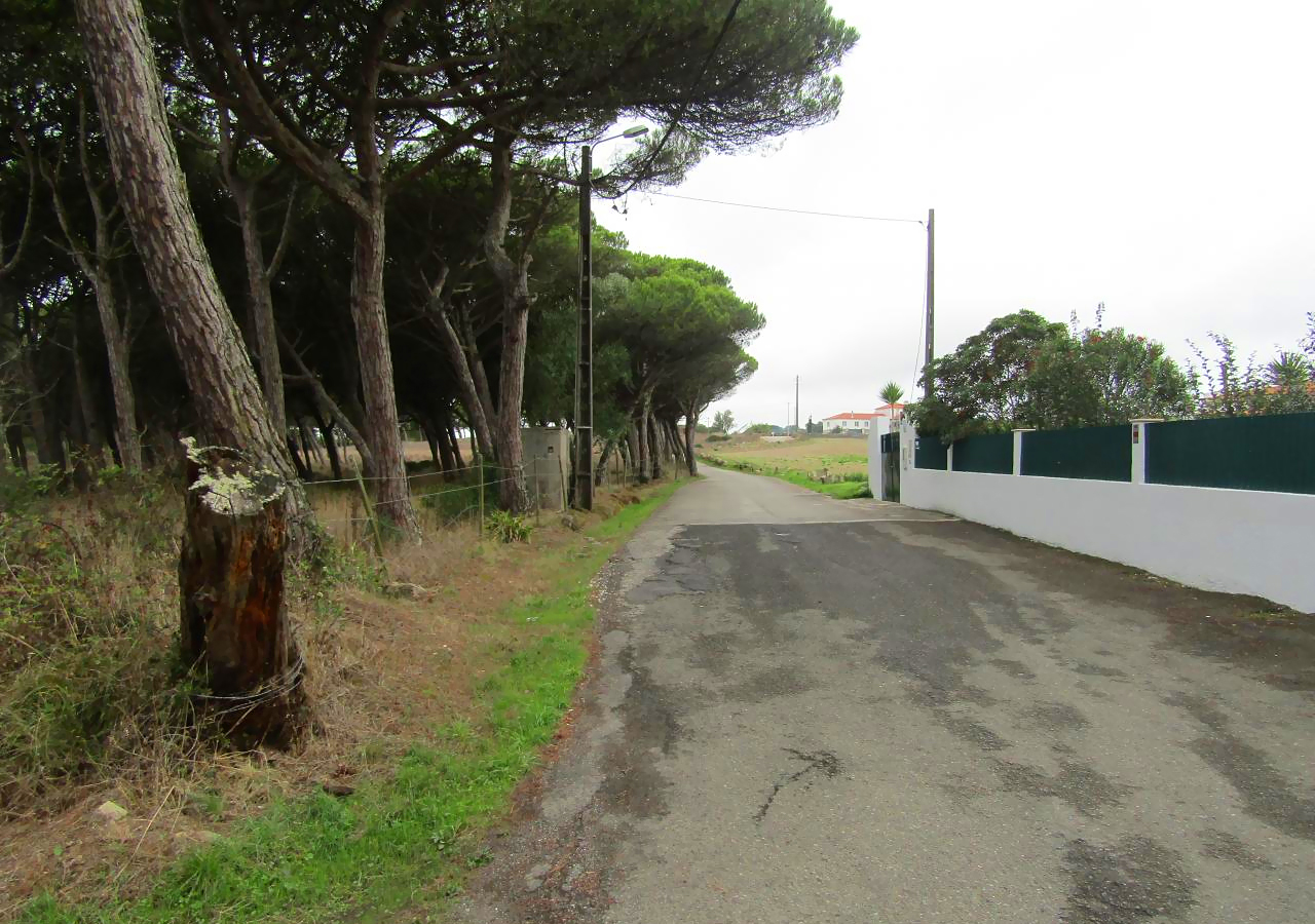 Terrenos rústicos em Terrugem, Sintra